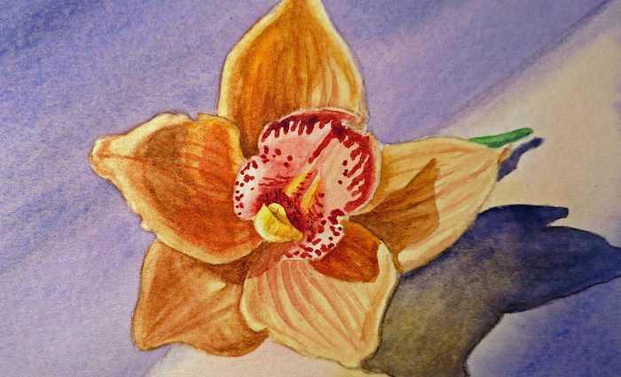 Акварельные рисунки цветов. Irina Sztukowski 1