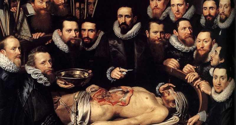 Анатомия в эпоху возрождения (статьи) 1