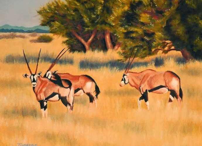 Животные дикой природы. Gail Tunberg 171