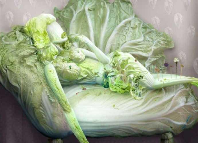 Фантазии китайской капусты 4