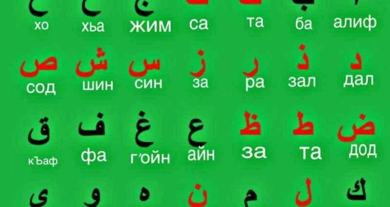 Освоить арабский язык онлайн – быстро и эффективно 1