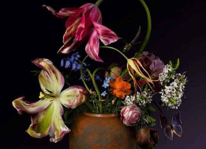 Натюрморты с цветами. Bas Meeuws. Часть 1 (фотограф) 181