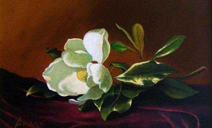 Пейзажи и натюрморты. Daniel Arago 1