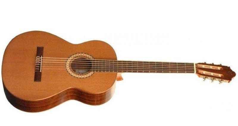Выгодная покупка классической гитары в Интернет-магазине 1
