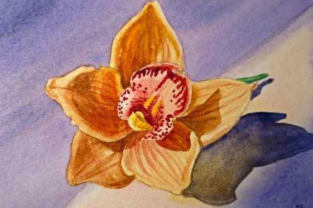 Цветы и цветочные натюрморты акварелью. Irina Sztukowski 1