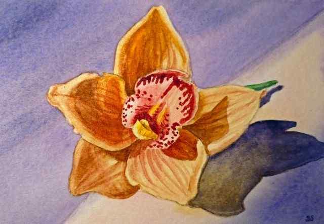 Цветы и цветочные натюрморты акварелью. Irina Sztukowski 4