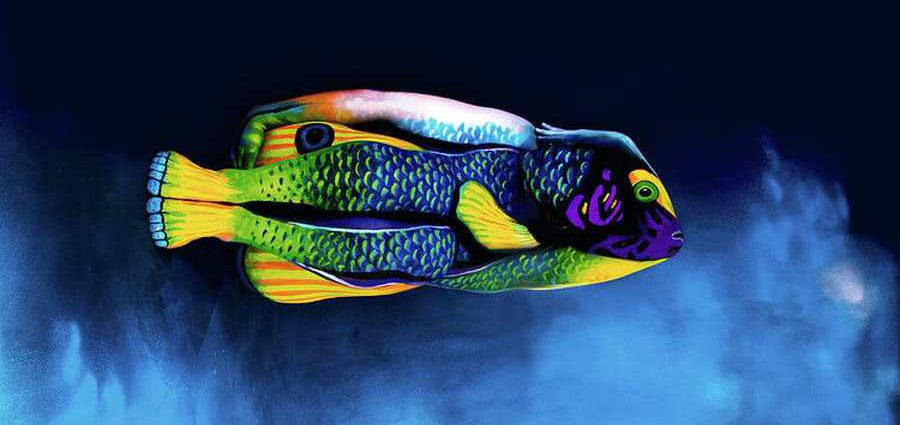 Звериный боди арт (Animal Body Painting)