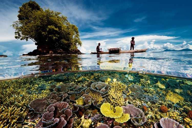 Отец и сын, залив Кимбе, Папуа-Новая Гвинея, 2013 год